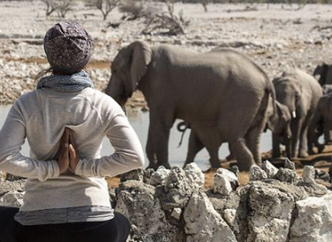 Namaste Yoga Safaris